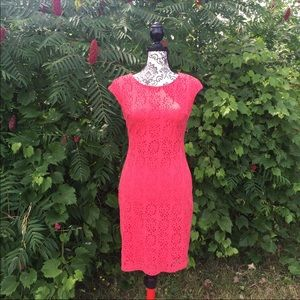 BISOU BISOU Pink Eyelet Pencil Dress Size 4
